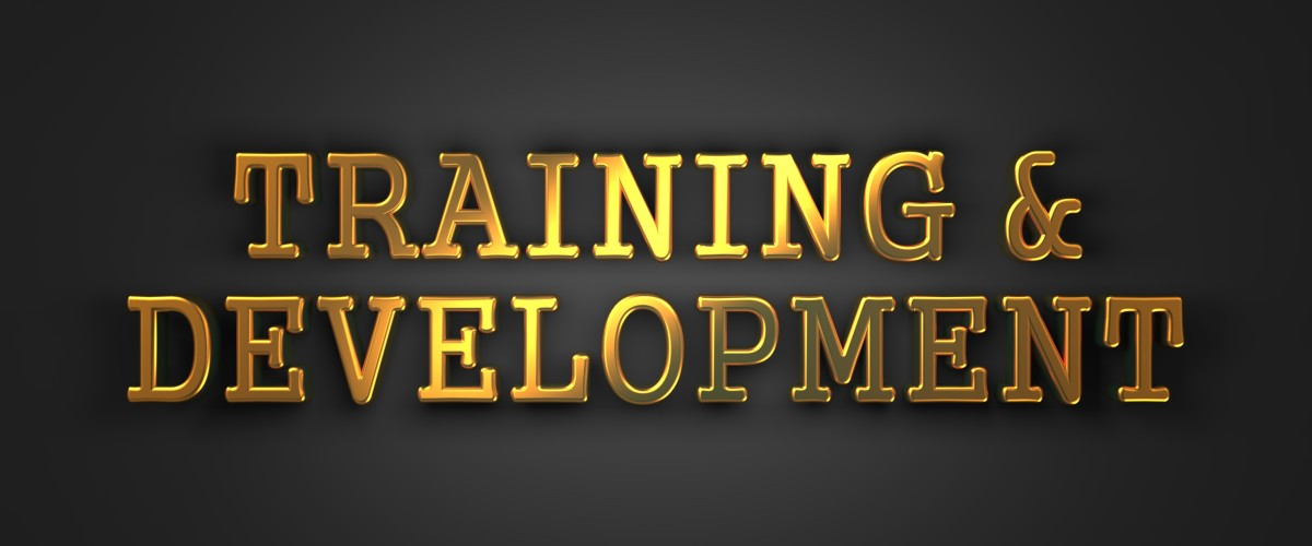 training and development , staff training and development